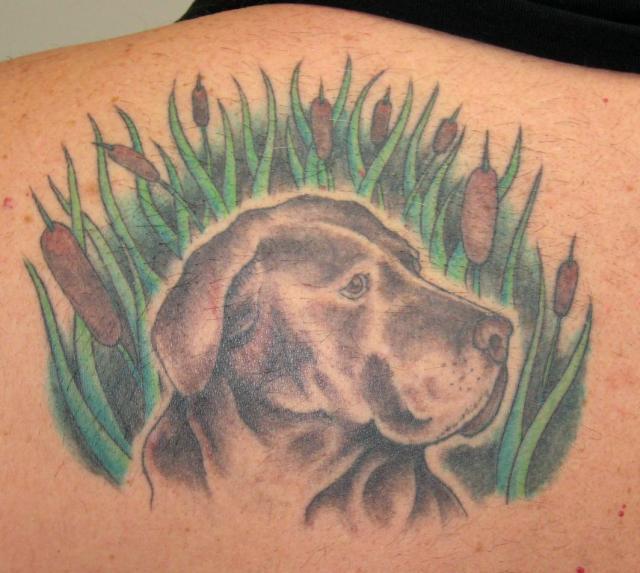 Dog Tattoo Images & Designs
