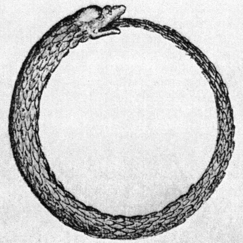 Ouroboros Tattoo Images Amp Designs