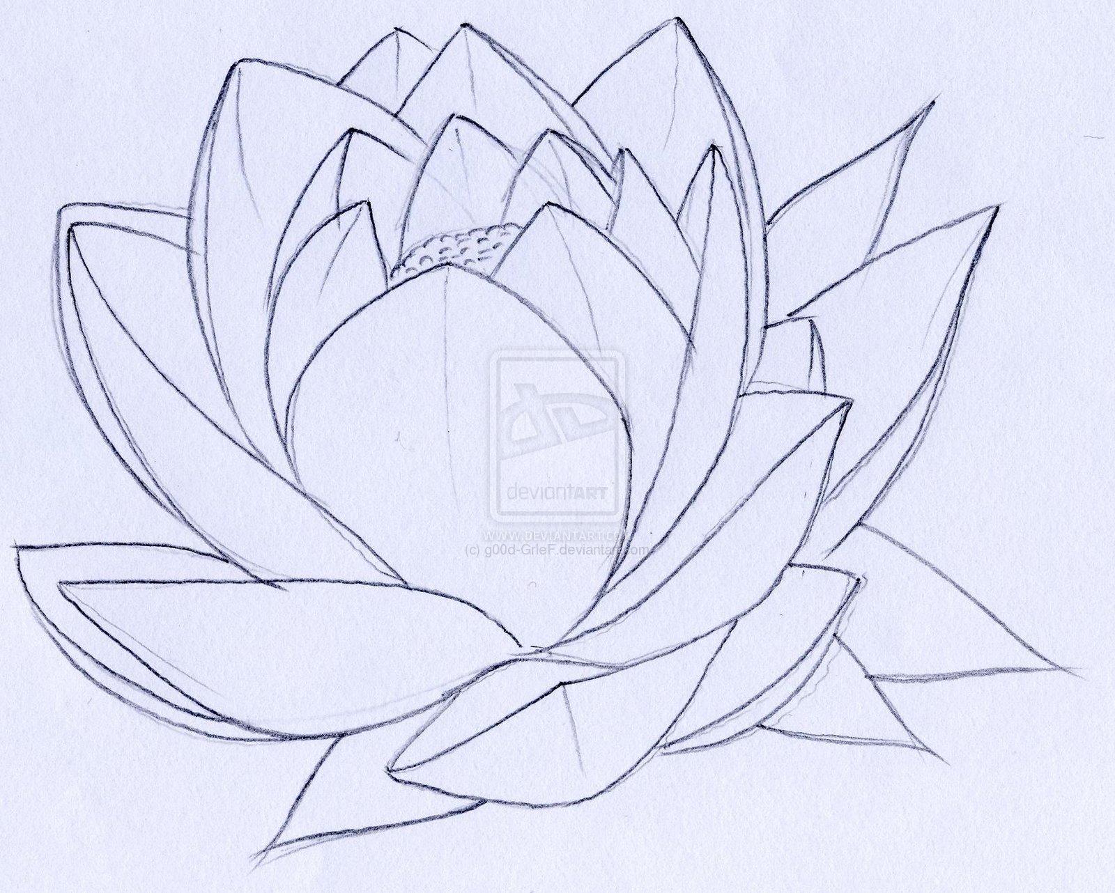 Lotus tattoo small