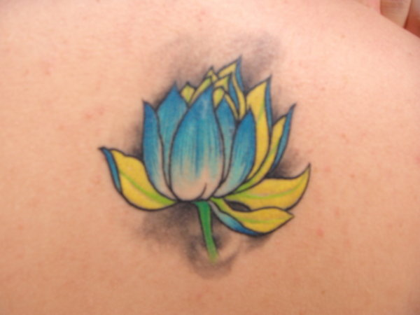 Yellow And Blue Ink Lotus Tattoo On Right Back Shoulder