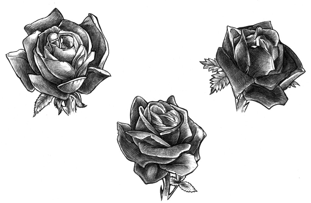 Black Rose Tattoos Designs