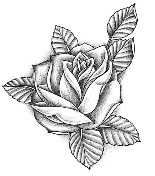grey-ink-rose-tattoo-desin Tattoo Lettering Templates on last name, flash books, different fonts for, baby girl,