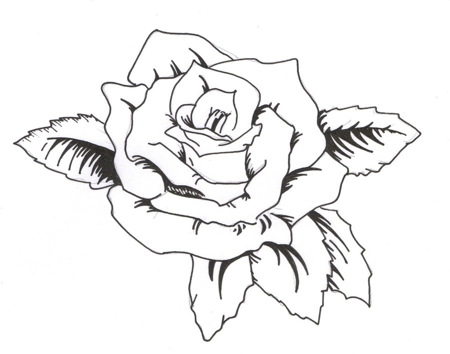 Cherry blossom crest clipart free clip art images - Rose Tattoos Page 70