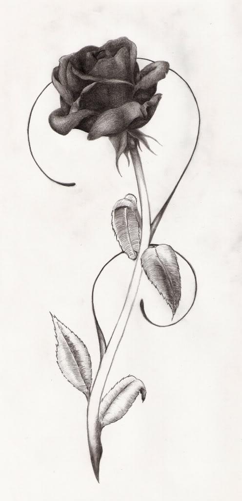 Trendy Black Rose Tattoo Design,Solution Design Group