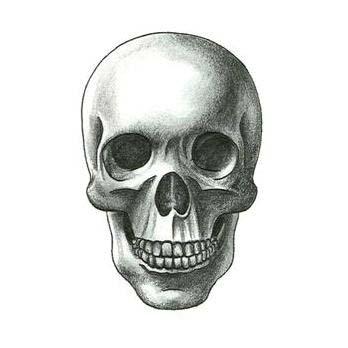 skull tattoos page 63. Black Bedroom Furniture Sets. Home Design Ideas