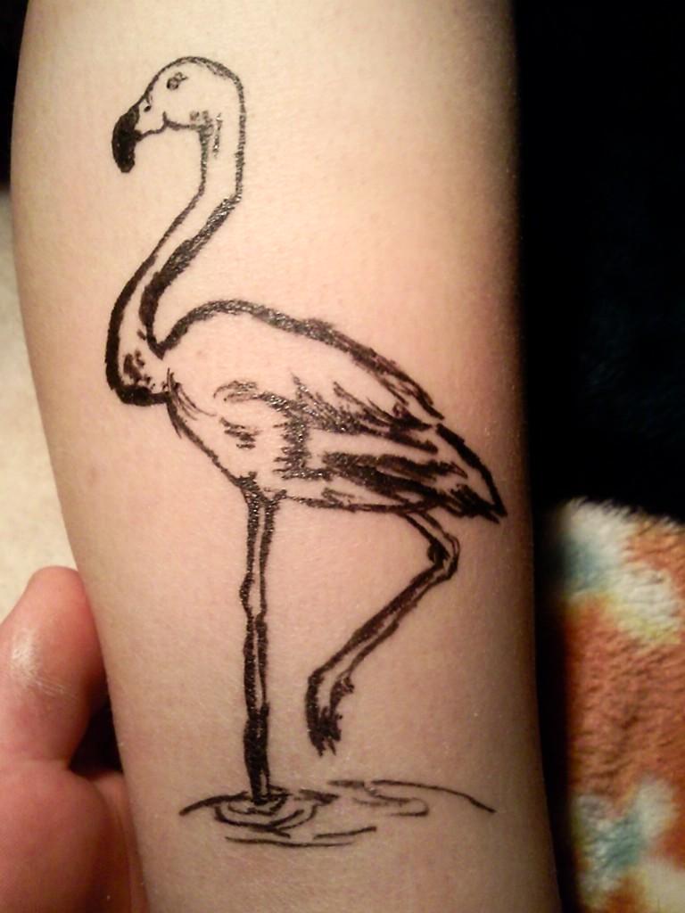 flamingo images designs