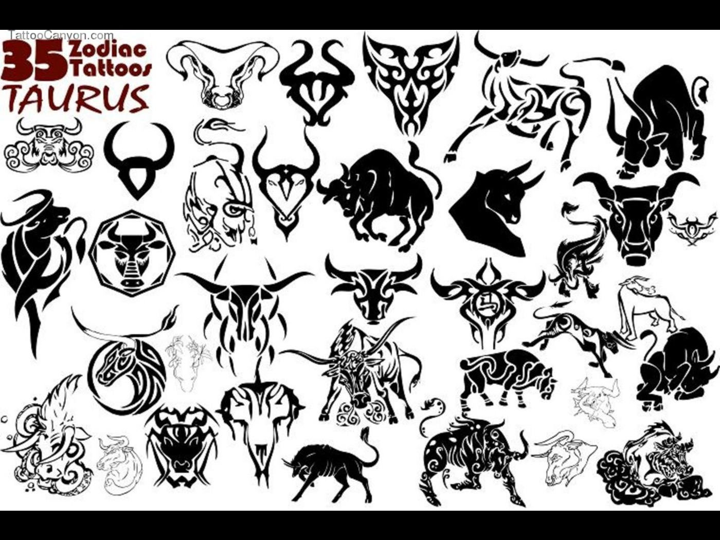 Pics photos taurus tattoos bull tattoo art - Black Ink Taurus Tattoos Designs