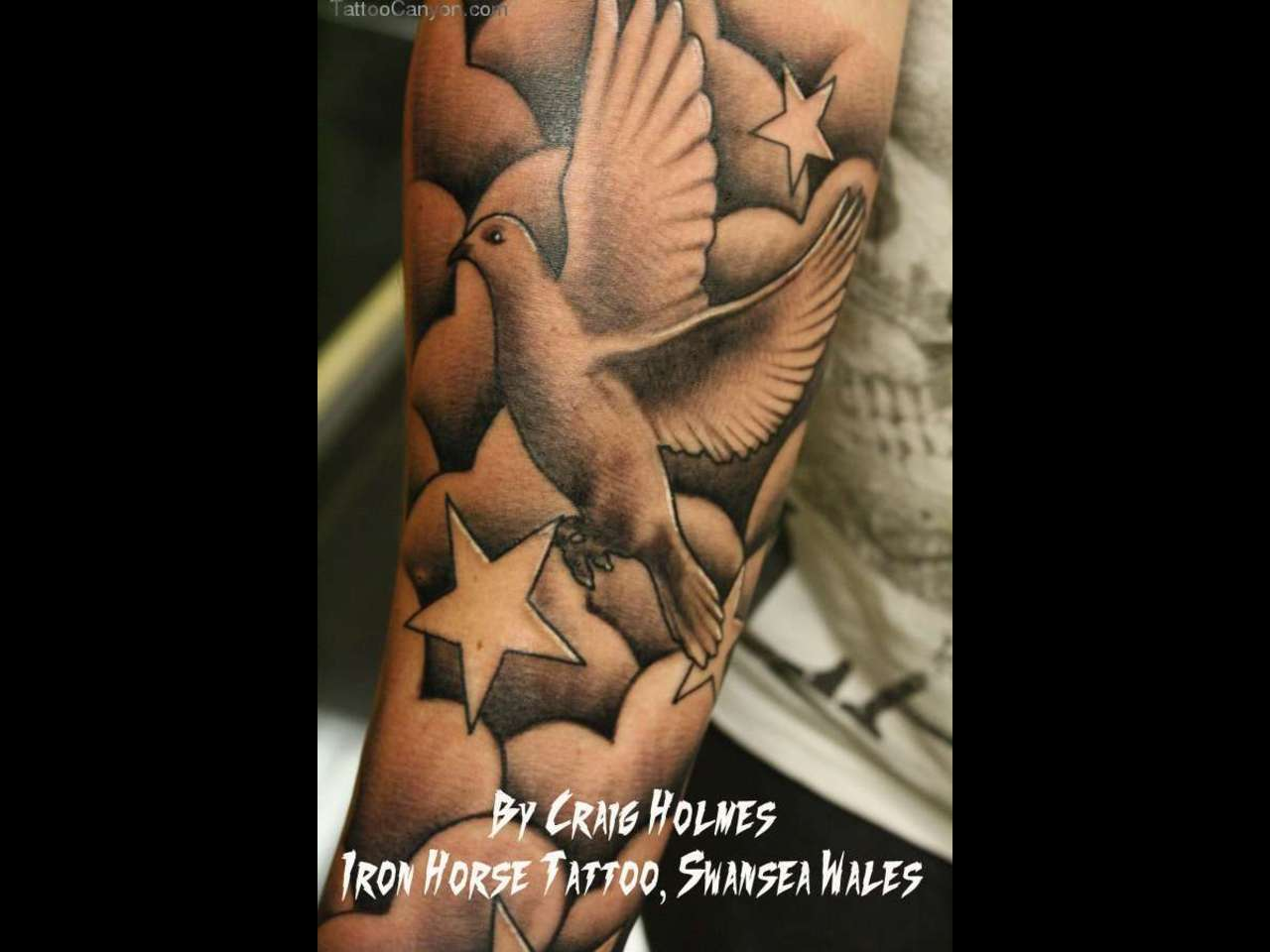 Dove Tattoos Half Sleeve