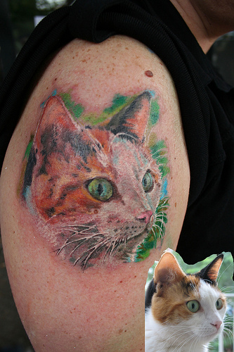 Abstract Color Cat Face Tattoo On Right Half Sleeve