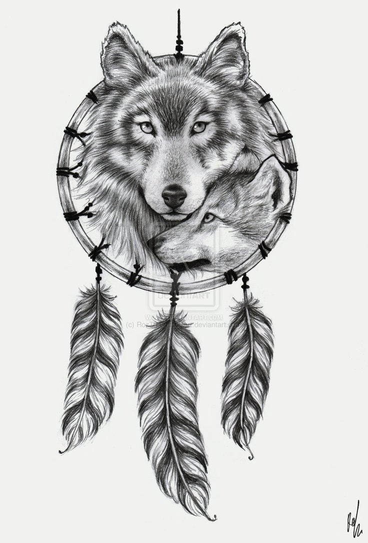 awful wolf head and dreamcatcher tattoo design. Black Bedroom Furniture Sets. Home Design Ideas