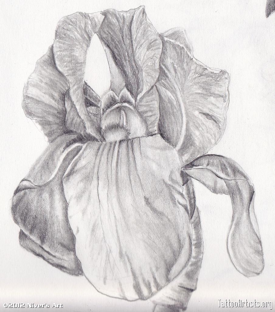 Grey ink iris flower tattoo design izmirmasajfo