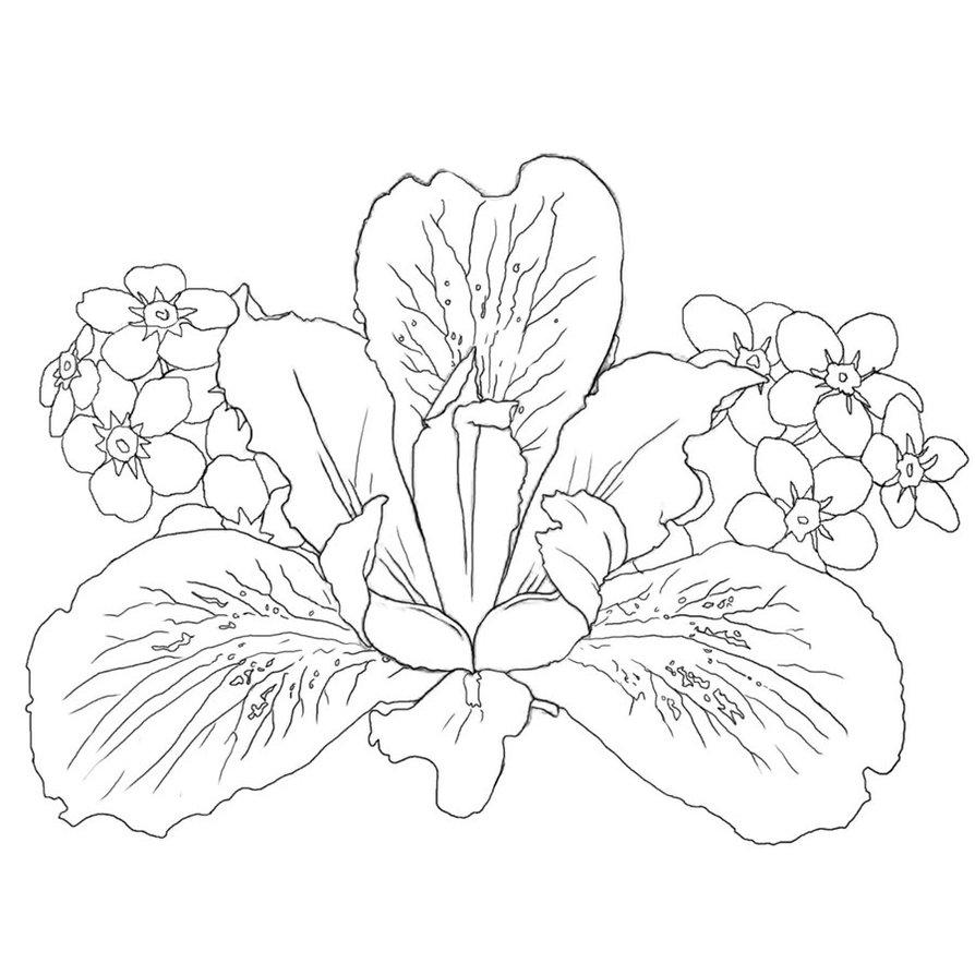 Iris flowers tattoo design izmirmasajfo Images