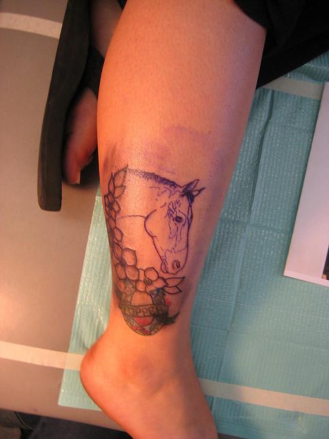 horse tattoo images  u0026 designs