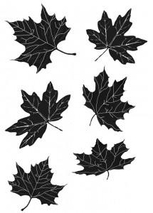 Leaf Tattoo Design