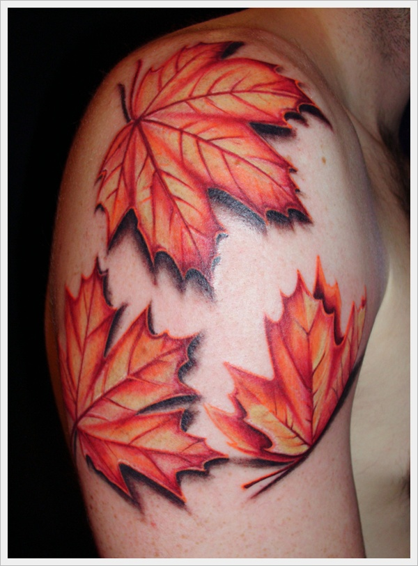 Maple Leaves Tattoos On Right Shoulder