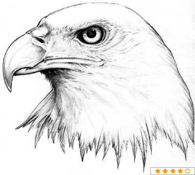 Animal Head Tattoo Design