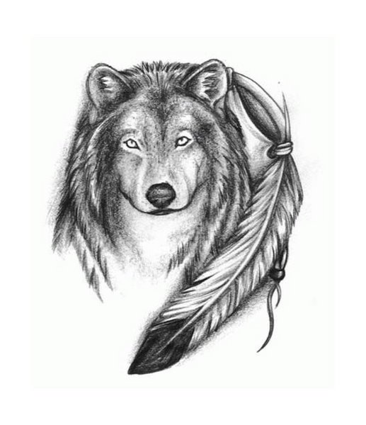 Wolf tattoostime search for Wolf tattoo with feathers