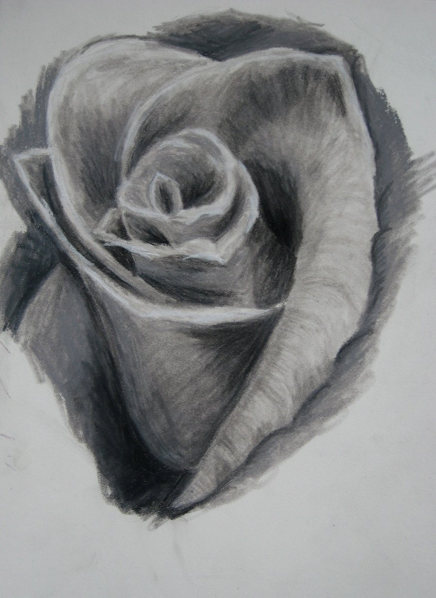 Traditional Black And White Rose Tattoo