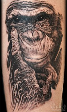 Chimpanzee tattoo images designs for Ink monkeys tattoo