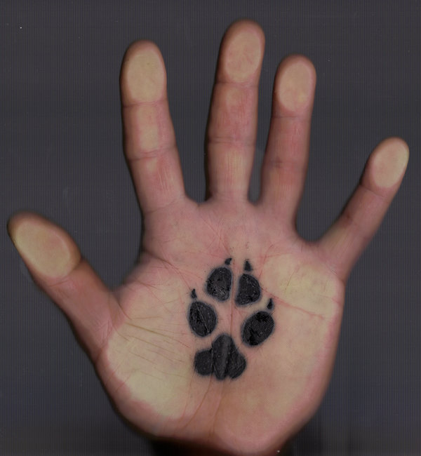 Paw Print Tattoos With Flowers: Coyote Tattoo Images & Designs