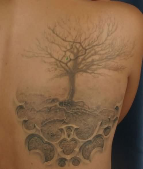 Family Tree Tattoo On Back Body