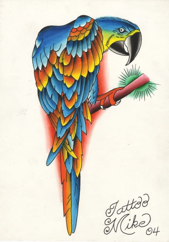 parrot tattoo images designs. Black Bedroom Furniture Sets. Home Design Ideas
