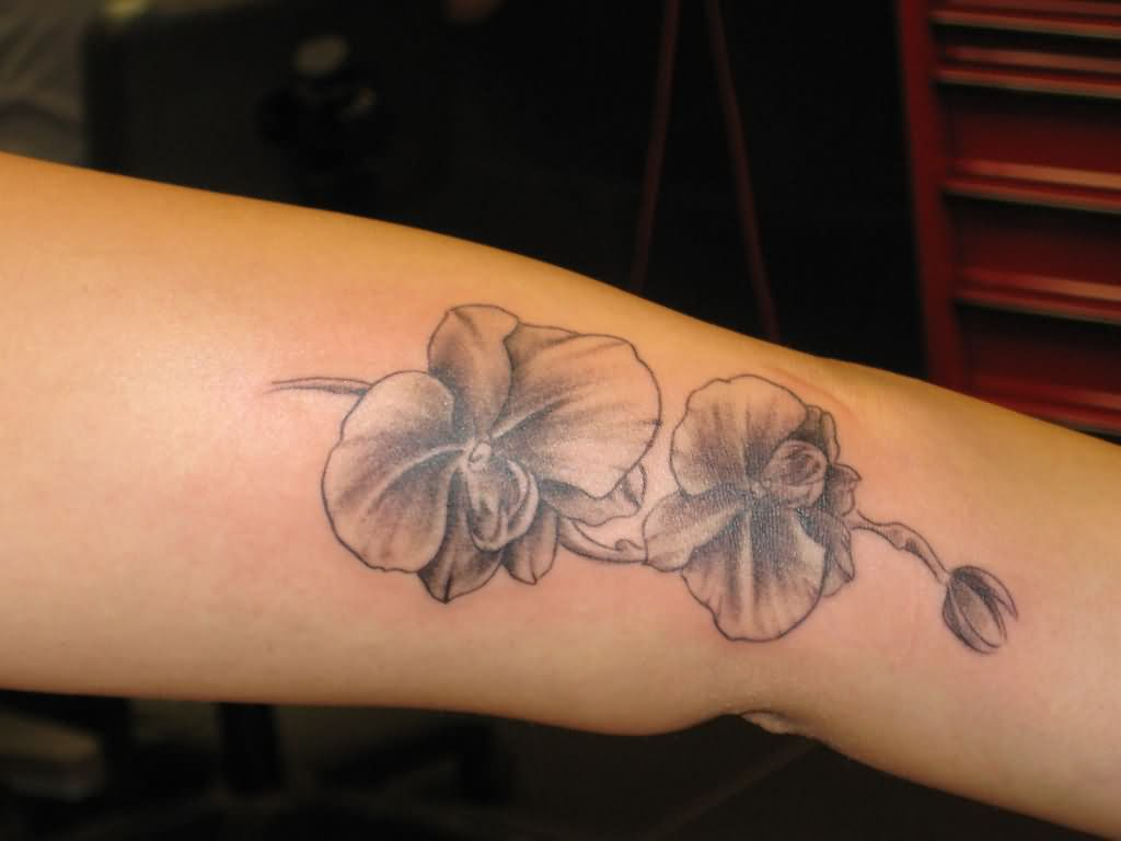 Cattleya Orchid Tattoo