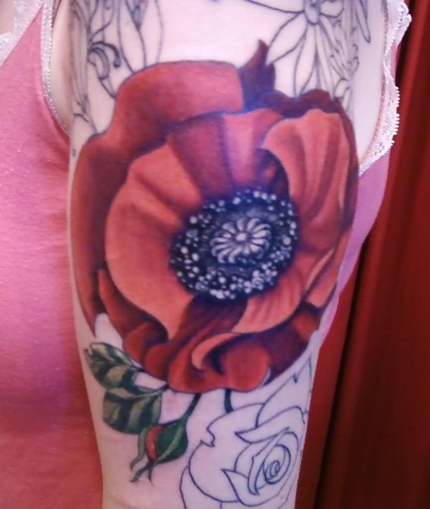 28 Poppy Tattoos Designs Ideas: Poppy Tattoo Images & Designs