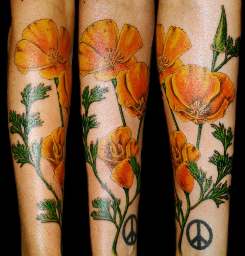 Poppy Half Sleeve Tattoo: Poppy Tattoo Images & Designs
