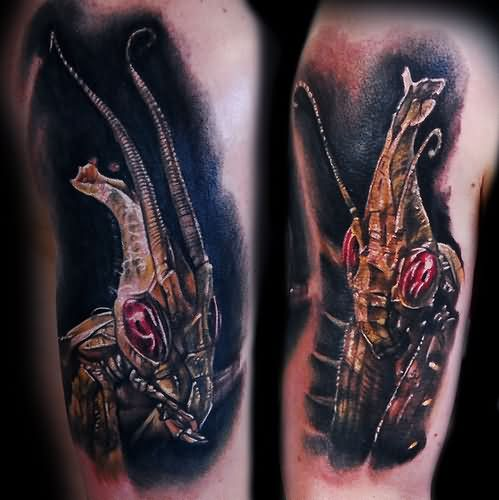Mantis Tattoo Images Designs