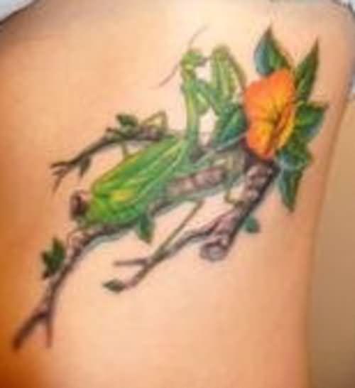 Flower And Mantis Tattoo