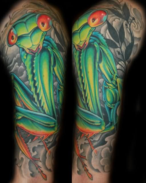 Half Sleeve Mantis Tattoos