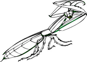 Praying Mantis Tattoos Design