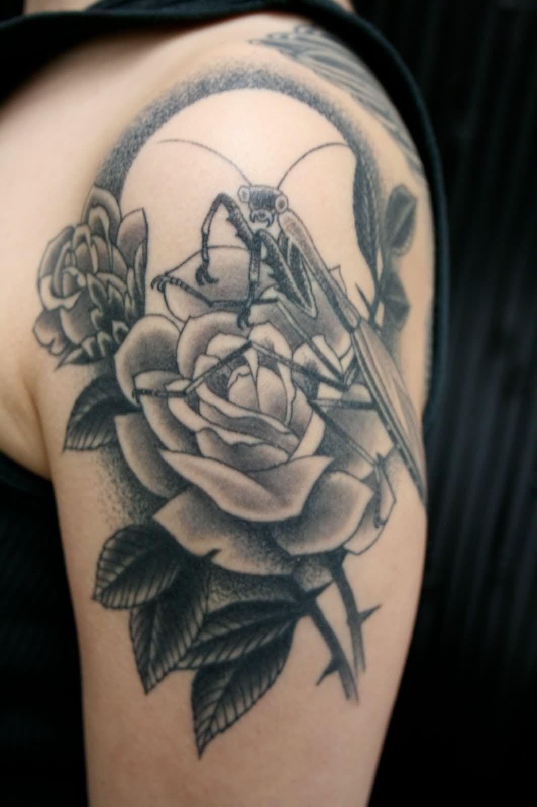 Rose Flower And Mantis Tattoo Design