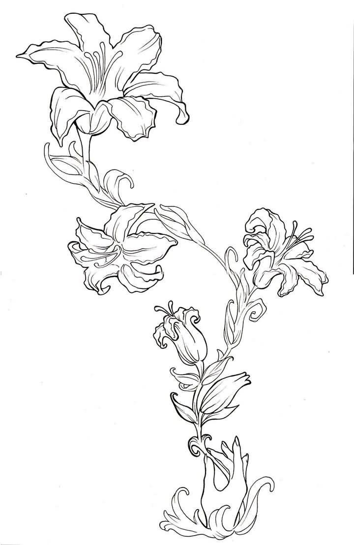 Awesome Outline Lily Flowers Tattoo Design
