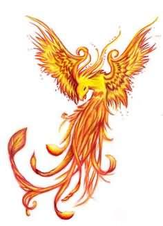 Color Phoenix Tattoo Design Idea