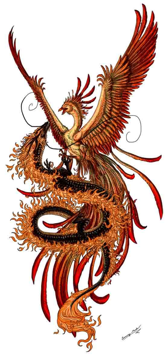 Nice Colored Phoenix Tattoos Designs