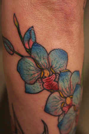 Hibiscus Flower Tattoos on Hibiscus Blue Flower Tattoo