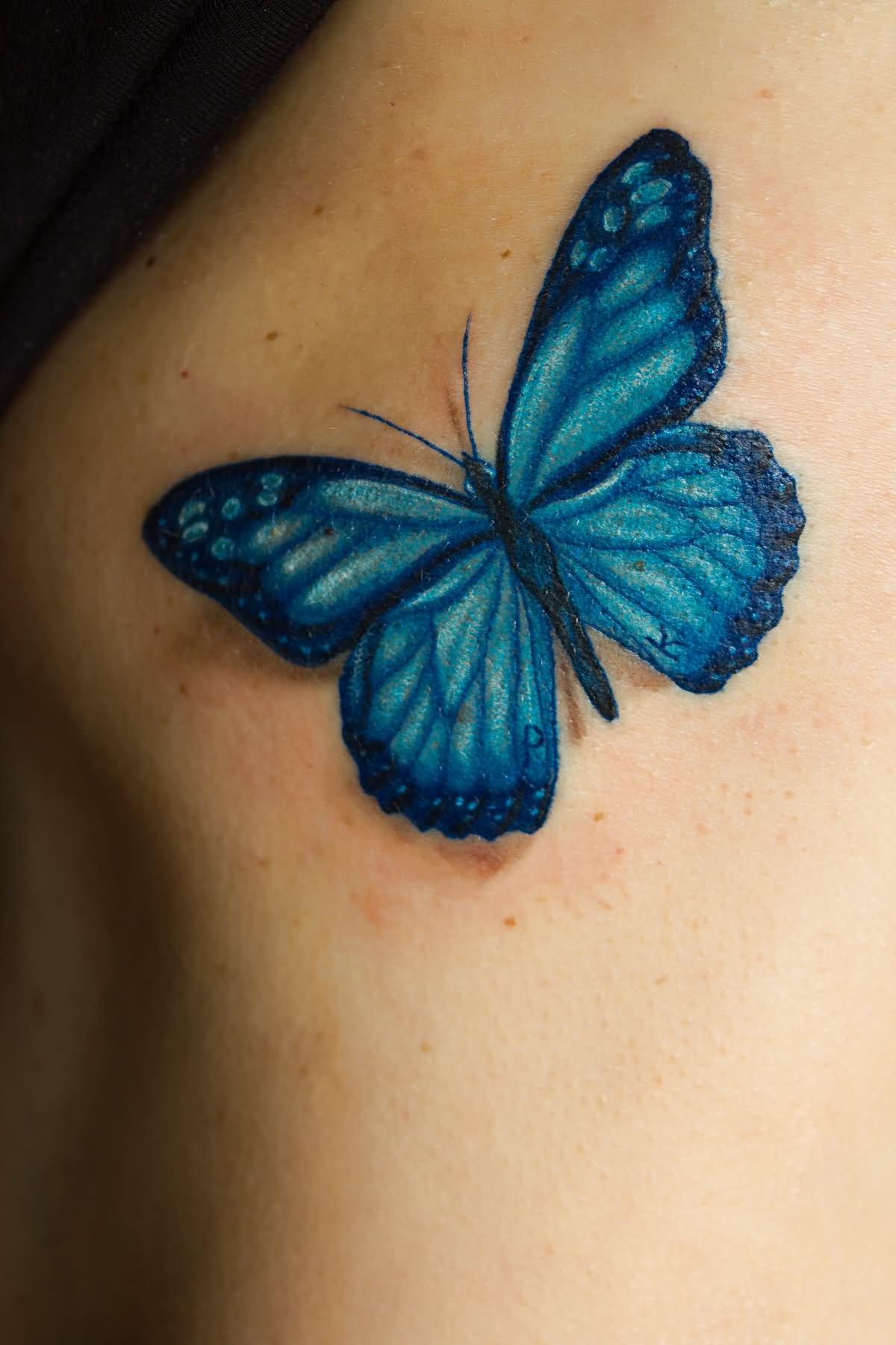 Blue morpho butterfly tattoo - photo#20