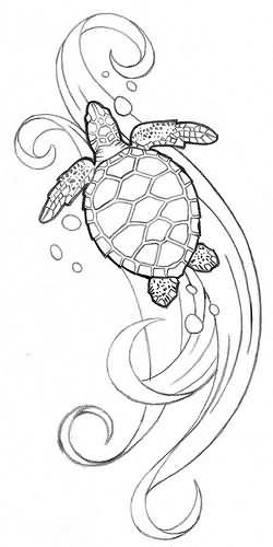 turtle tattoo images  u0026 designs