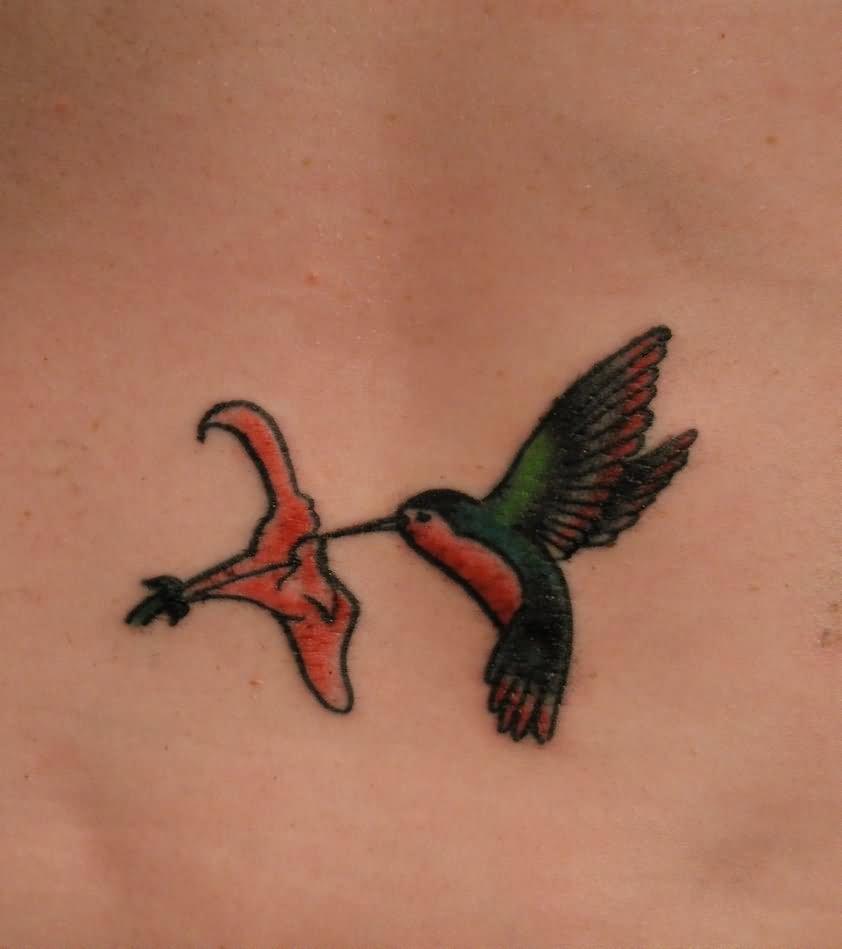 Grey Rose Flower Hummingbird Tattoo On Sleeve