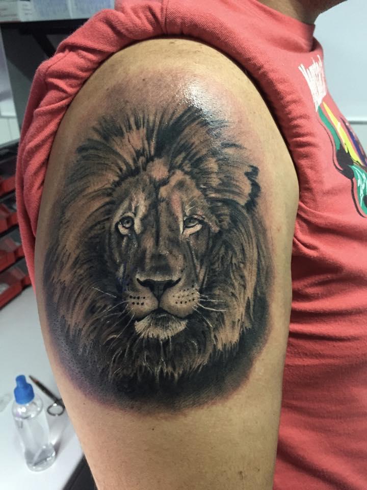 Grey Ink Lion Tattoo On Shoulder By Alex Gallo