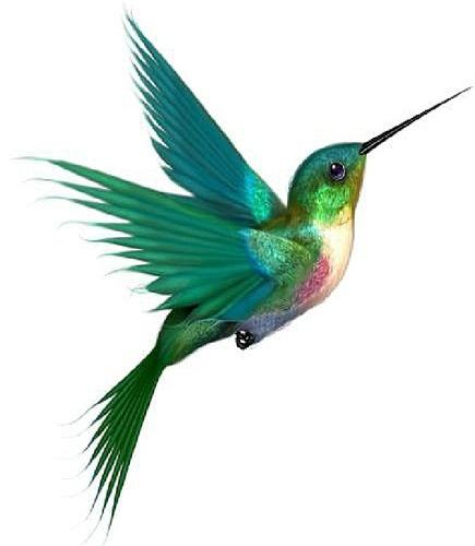 Flying Hummingbird Tattoo Design Idea