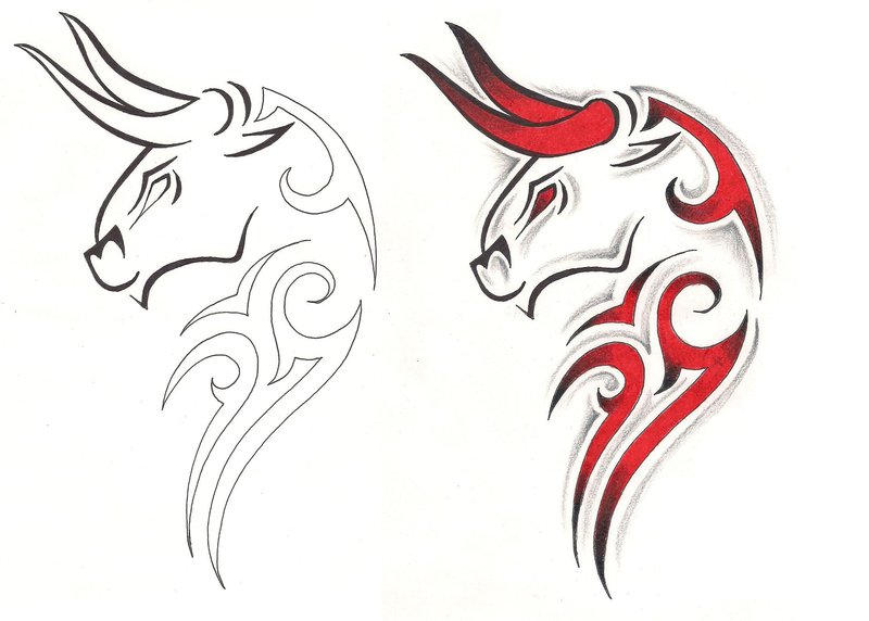 Taurus Tattoo Design Stencil