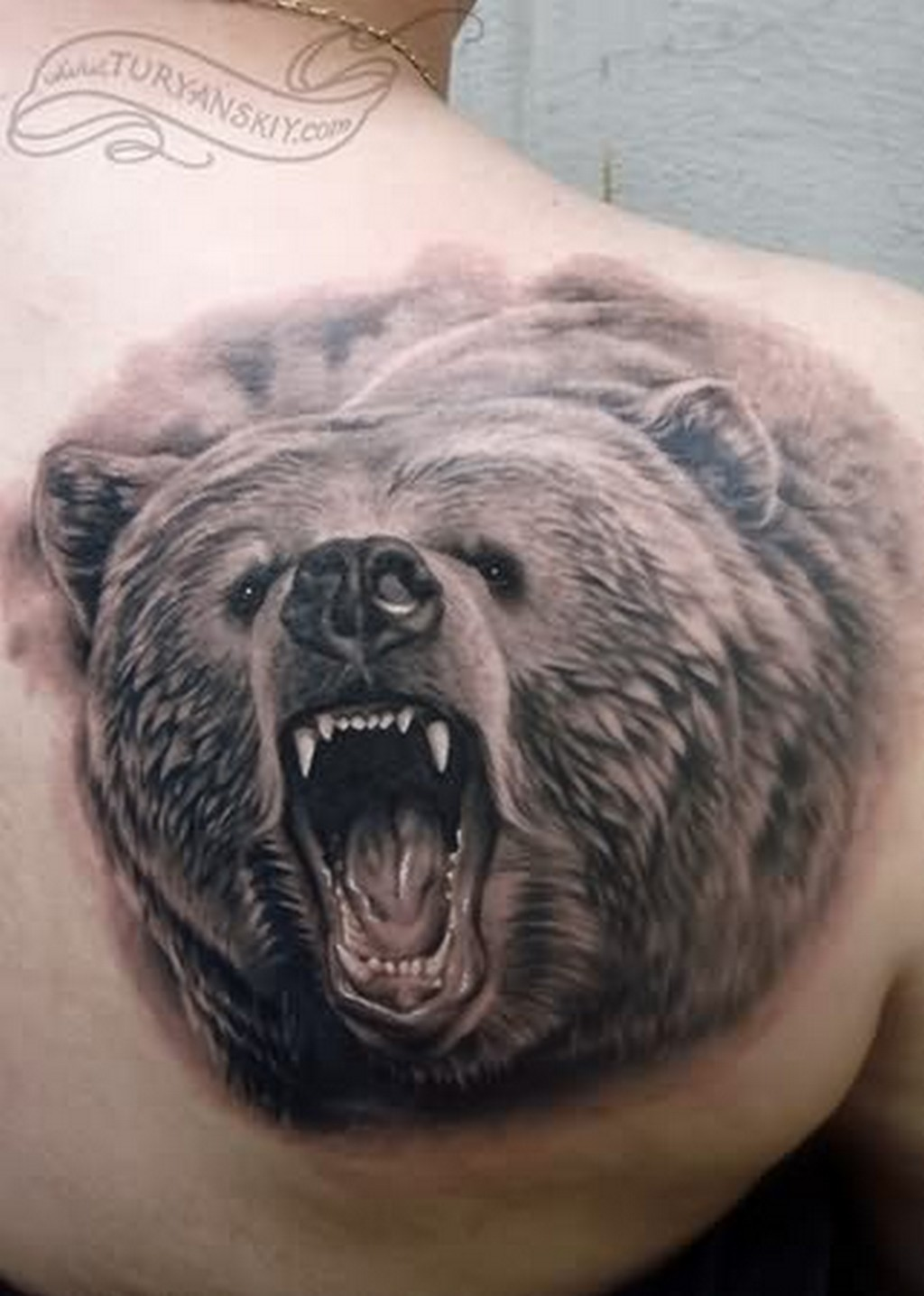 Realistic Bear Tattoo On Right Back Shoulder