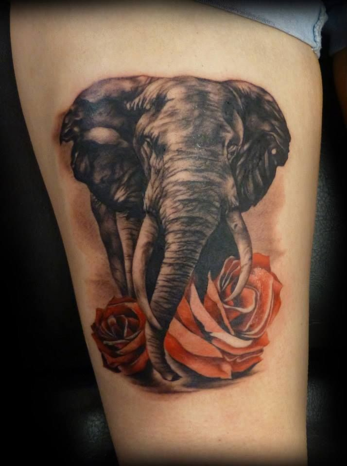 Infinity Tattoos With Butterflies Elephant Tattoo Images...