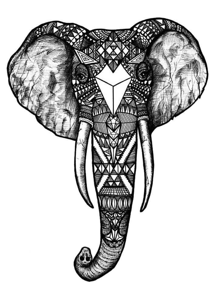 Black Line Drawing Tattoo : Elephant tattoo images designs