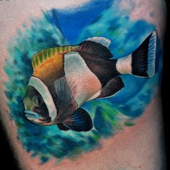 Colorful Fish Aqua Tattoo Design