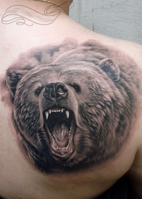 Realistic Grey Ink Bear Tattoo On Right Back Shoulder