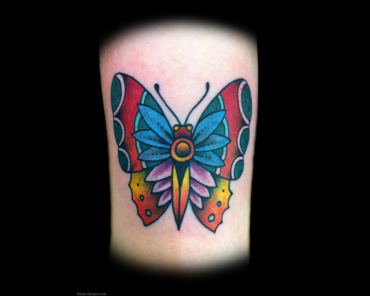 Nice Traditional Butterfly Tattoo
